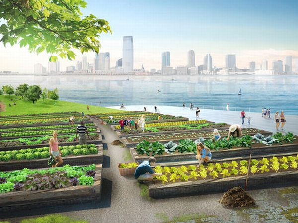 Green Loop Compost Island A green space and solution to NYC's organic waste   4