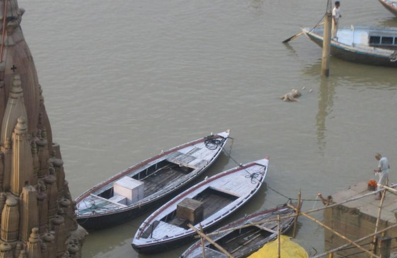 Bathing in the corpse-filled Ganges! 4