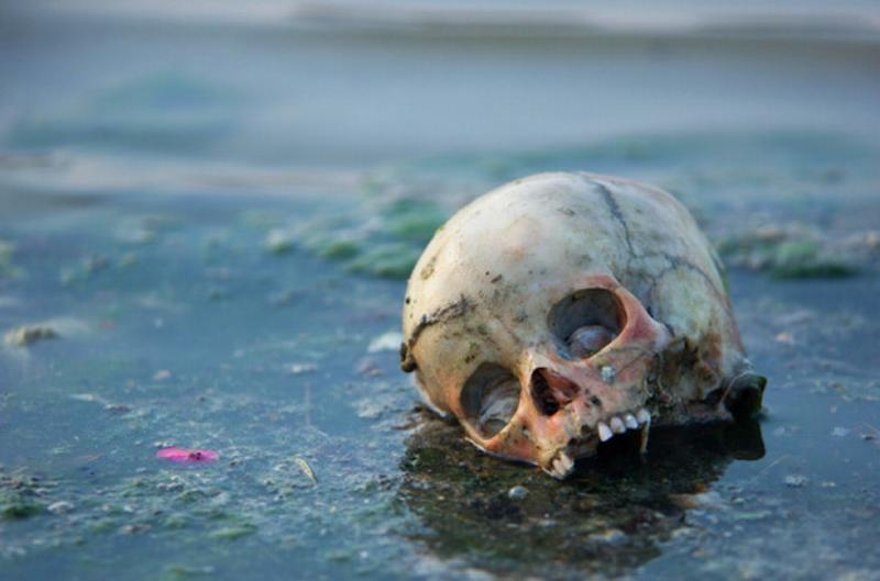 Bathing in the corpse-filled Ganges 5