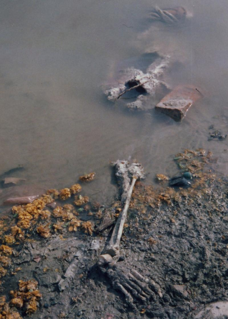 Corpses on the Ganges River, giving off an offensive rotting stench 2