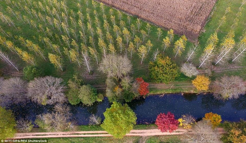 Lithuania autmun drone footage 0