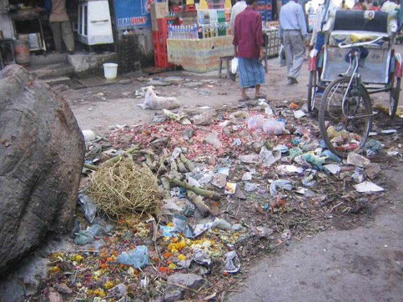 Roadside garbage India