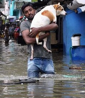 Chennai-rains-picture-29