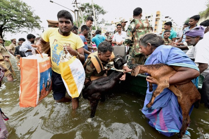 Army's flood relief operations in Chennai