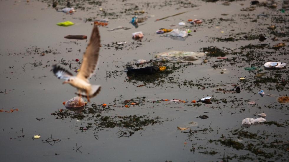 Litter and debris float down a stretch of the Yamuna river in Delhi