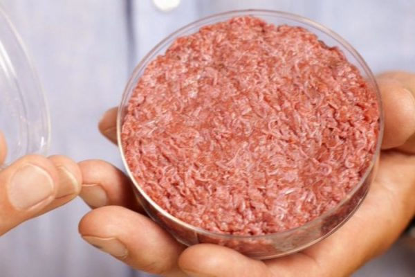 Researchers at IIT Guwahati Have Developed Lab-grown Meat with More Nutritious Values and Same Taste