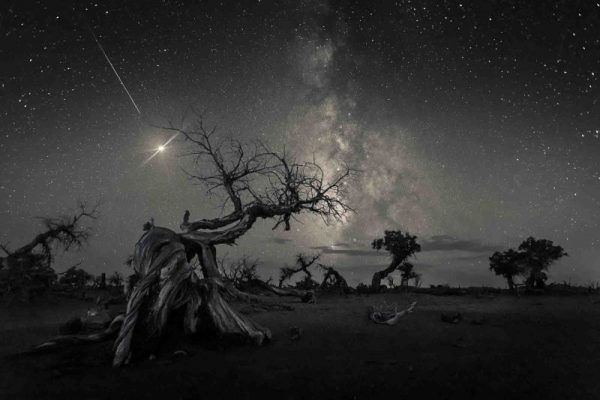 Winners of Insight Investment Astronomy Photographer 2019 Artistic Glances Into Space