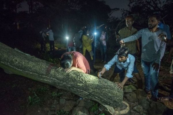 SC Orders Maharashtra Government to stop Tree cutting in Aarey Colony