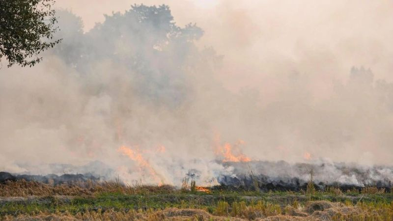 Stubble Burning in Neighboring States Continues to Worsen the Air Quality in Delhi