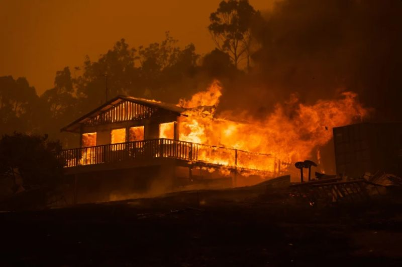 Catastrophic Bushfires in Australia Changing Country through Death and Destruction