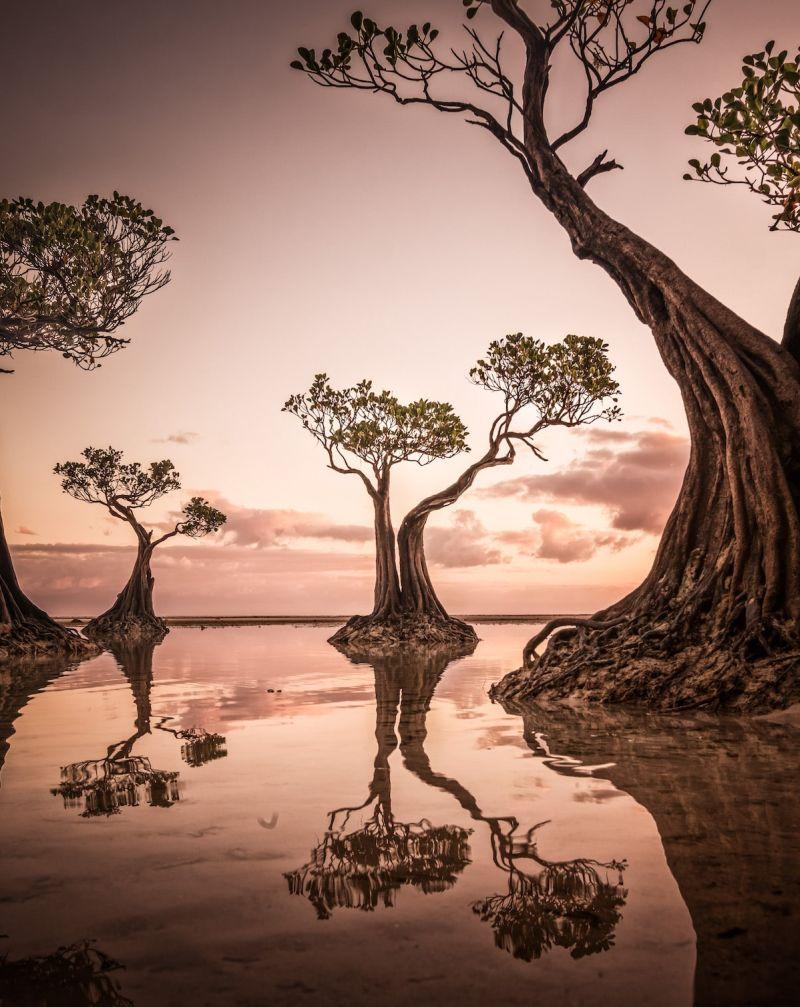 2020 Sony World Photography Awards Exhibit Beautiful Glimpse of Life Around the World
