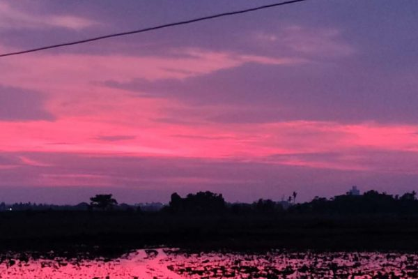 Cyclone Amphan Paints the Sky in Shades of Pink and Purple in Bhuvneshwar