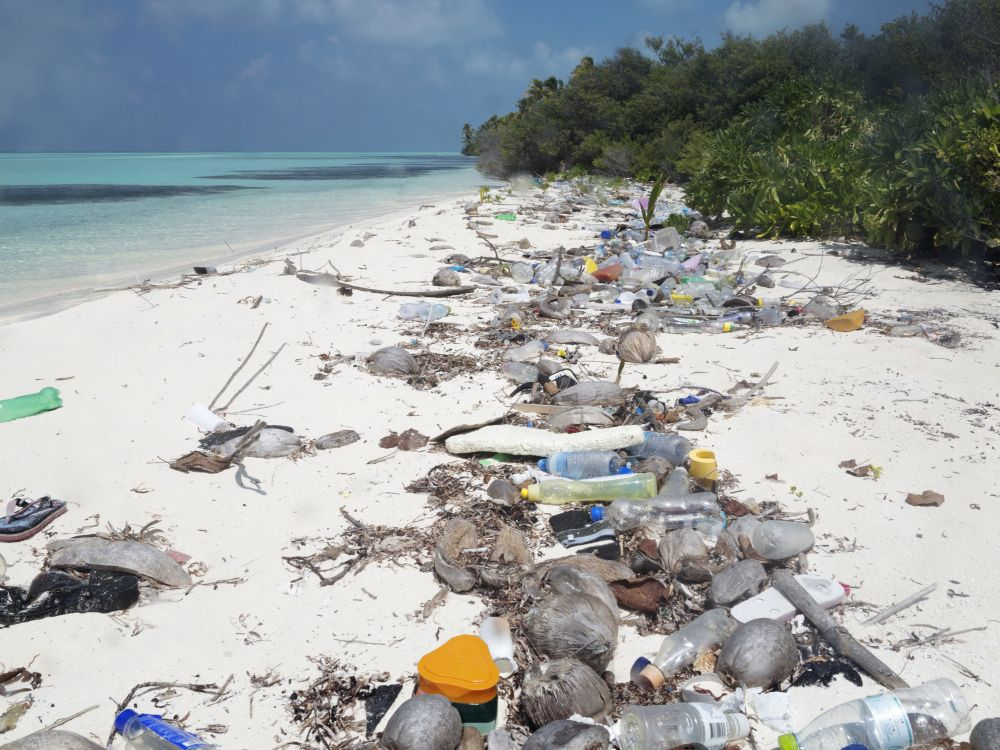 Maldives Registers Maximum Levels of Microplastics on the Planet