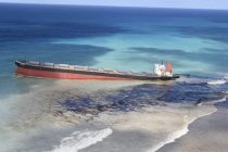 Mauritius Faces Environmental Crisis as Shipwreck Spills Oil in Waters