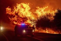 Blackened Forests and Charred Residents - US Wildfires 2020 seem an Apocalyptic Event
