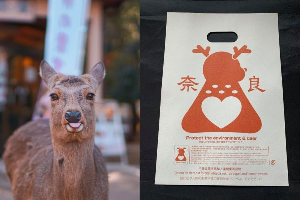 Japanese Man Invents Edible Bags to Protect Nara Deer from Choking on Plastic