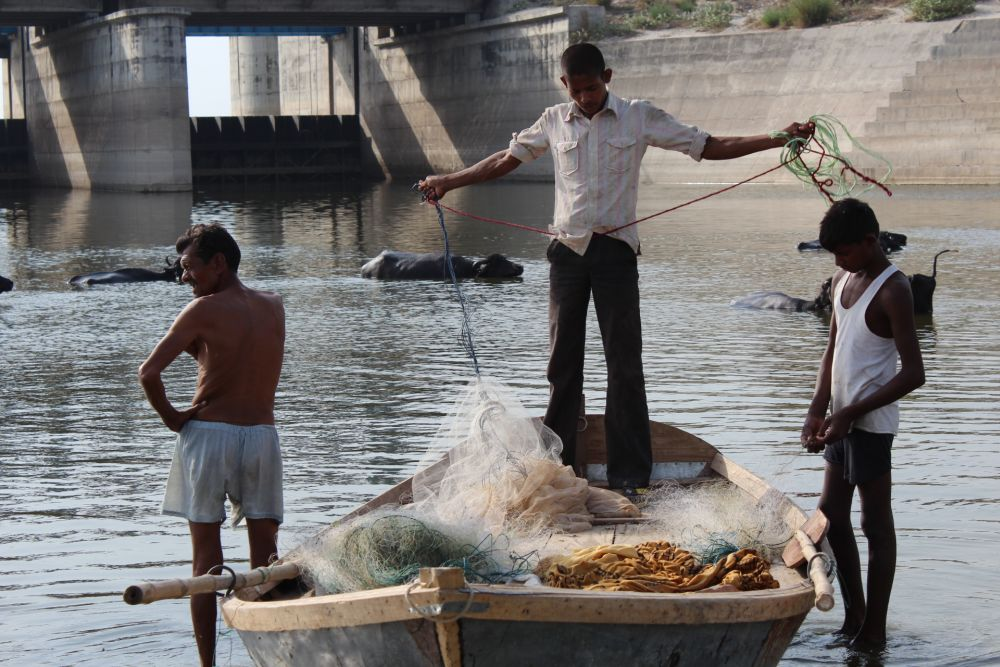 Discarded Fishing Nets Threaten Wildlife in River Ganges
