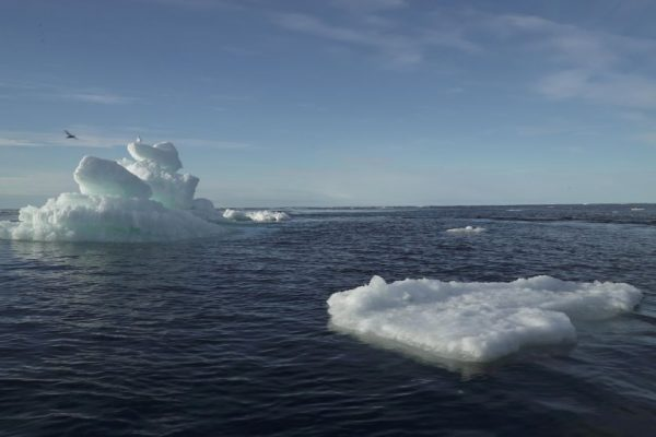 Cloth Washing Linked to Pervasive Spread of Microplastics in the Arctic