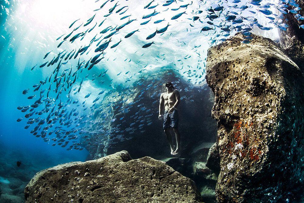 World Nature Photography Awards 2020 - Christa Funk