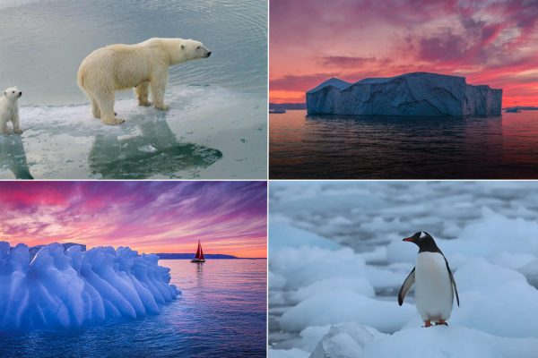 50 + Alarming Images Depicting Adverse Global Warming Effects on World's Ice Masses