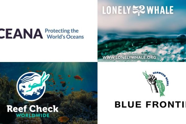 Ocean conservation organizations