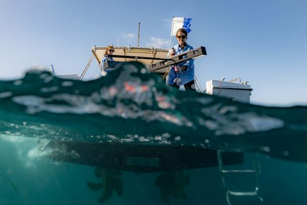 UK Launches World's Largest Ocean Monitoring System to Protect Marine Biodiversity