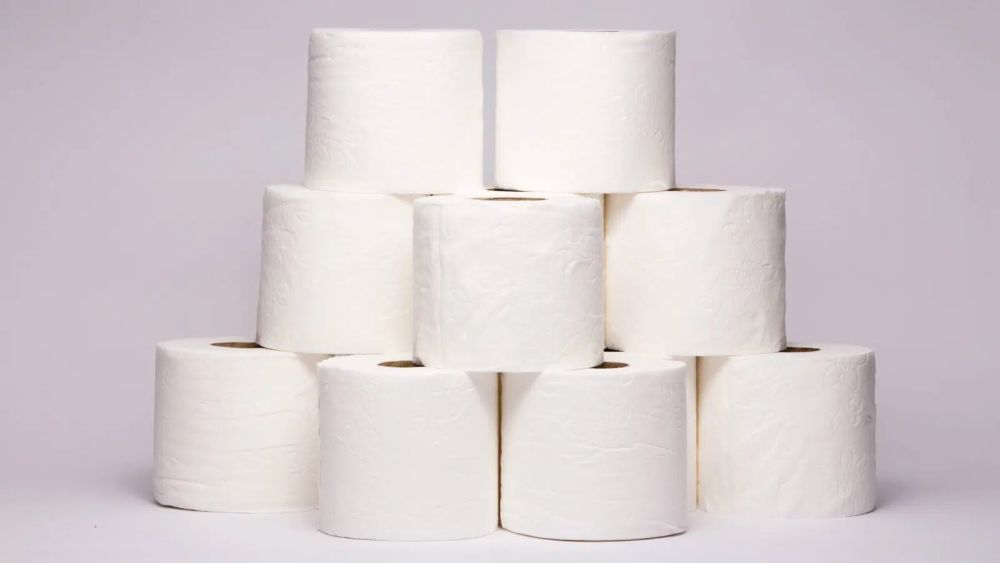 Toilet Paper and Deforestation: Are We Flushing Our Forests down the Toilet?