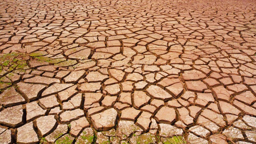 Drought could be the Next Pandemic, Warns a UN Report