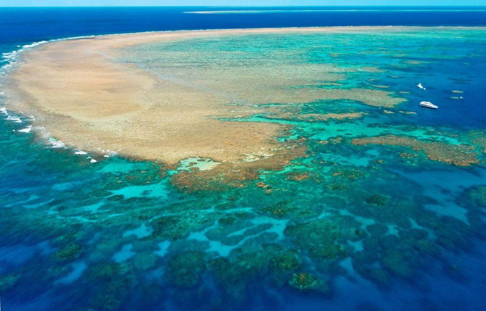 "UNESCO to Downgrade Great Barrier Reef's World Heritage Site Status to ""In Danger"""