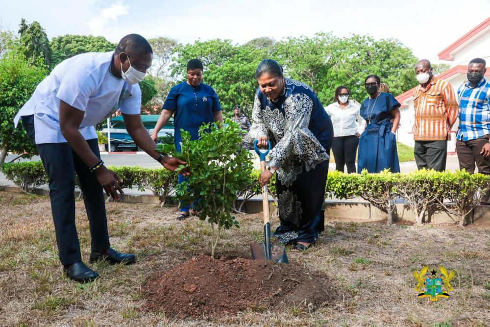 People in Ghana Plant 5 Million Trees To Fight Deforestation