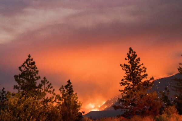 Climate Change Causes Heatwaves and Wildfires in Northern Hemisphere